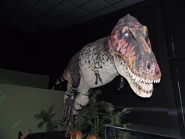Branson Dinosaur Museum - Branson Missouri 65616